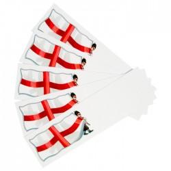 St George's Flag Mini Briefs